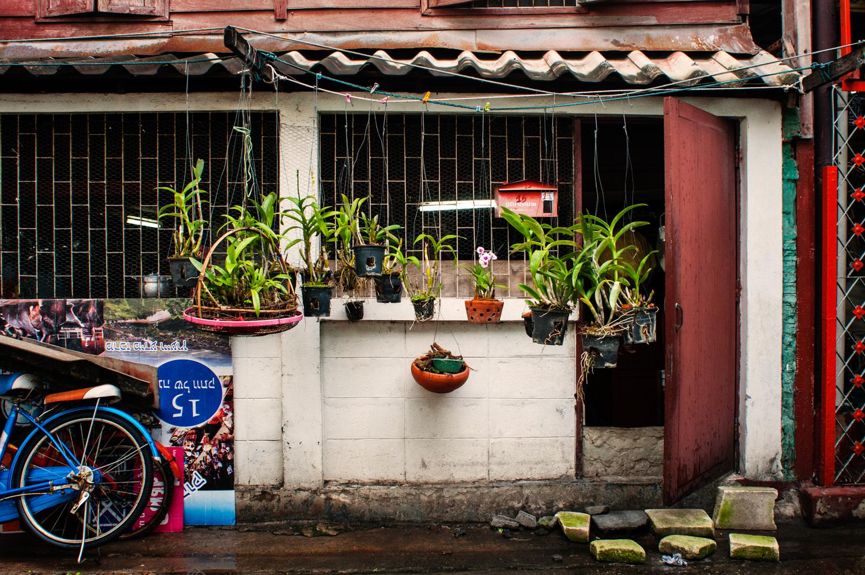 bangkok-ed-web-34.jpg