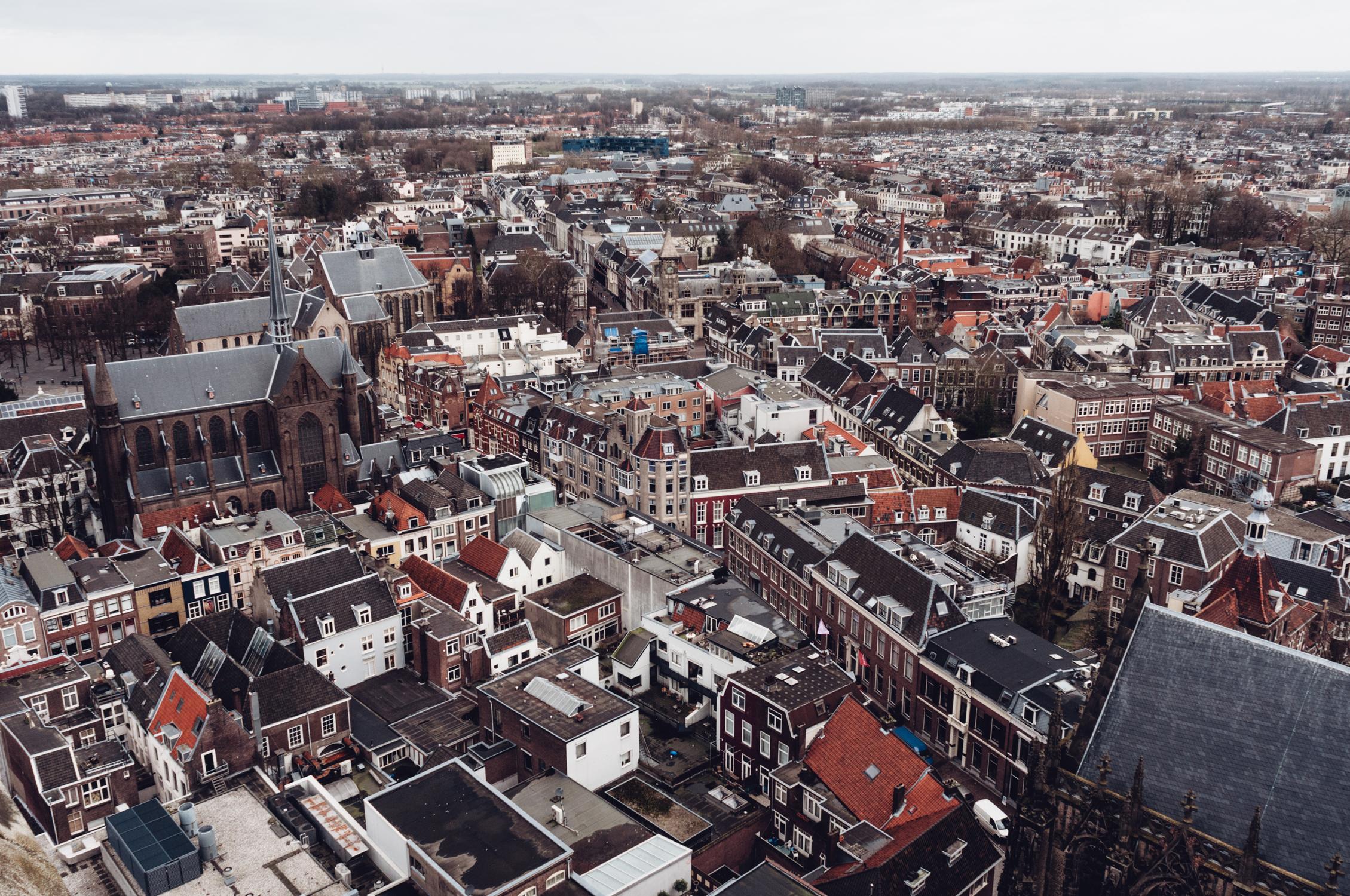 holland-web11.jpg