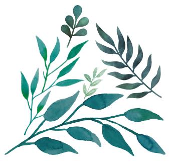 Branding - leaves.png