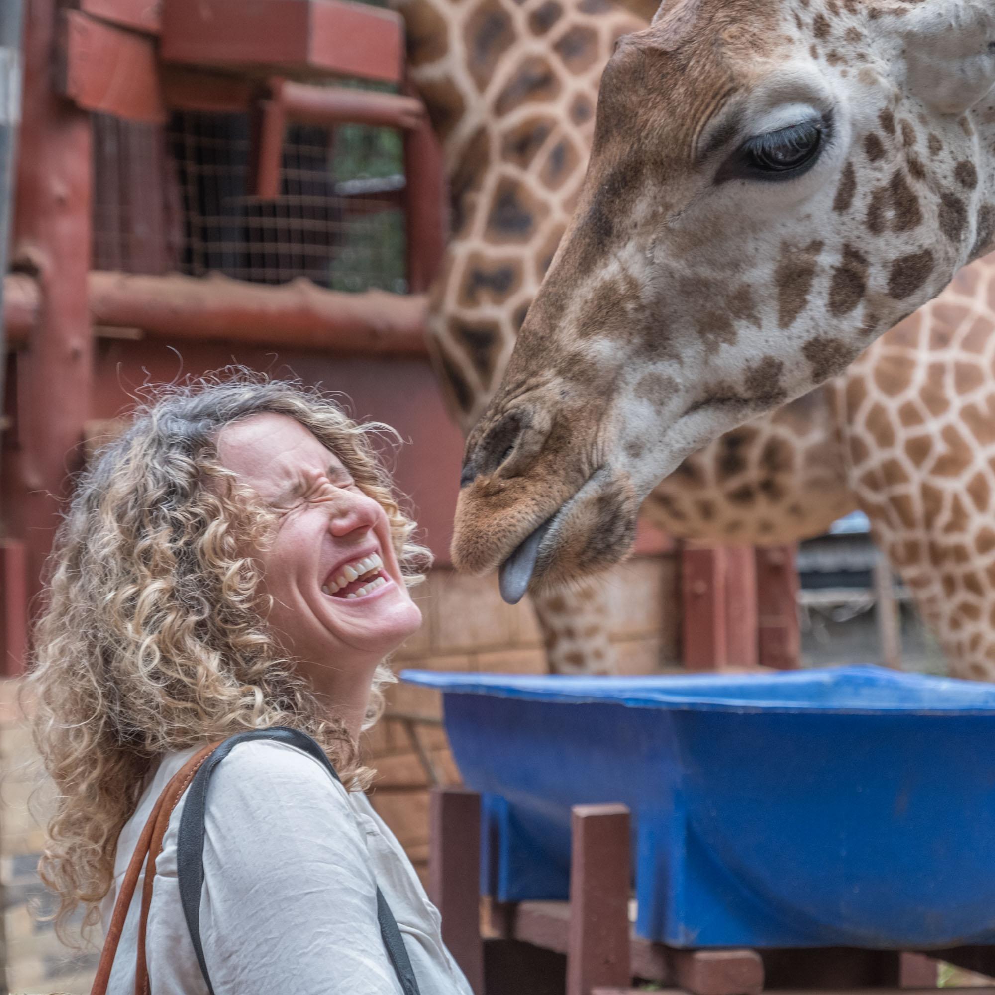 lorna-giraffe-kiss-nairobi-kenya-2018-01-11.jpg