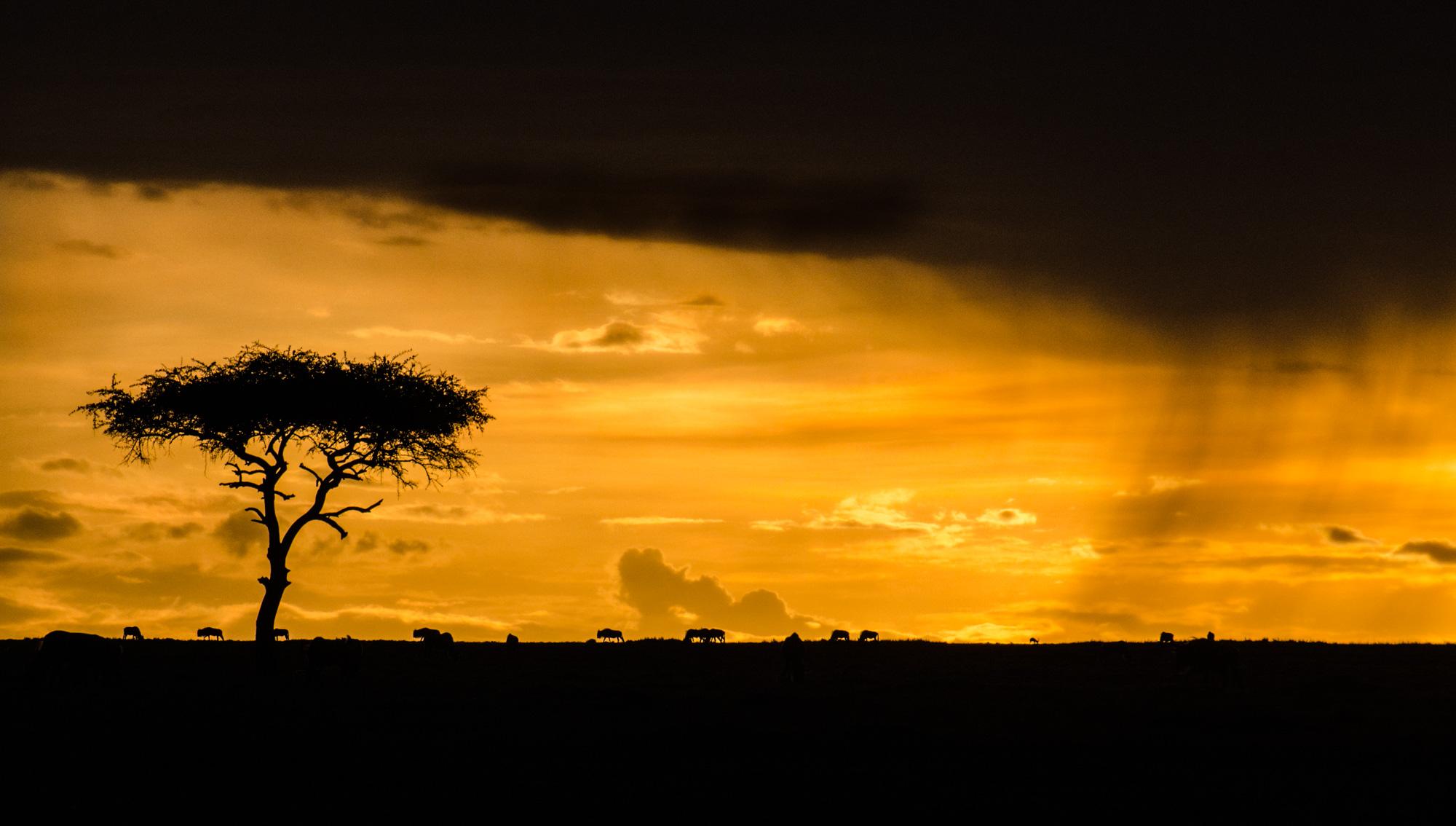 mara-sunset-rainstorm-kenya-2012-10-14.jpg