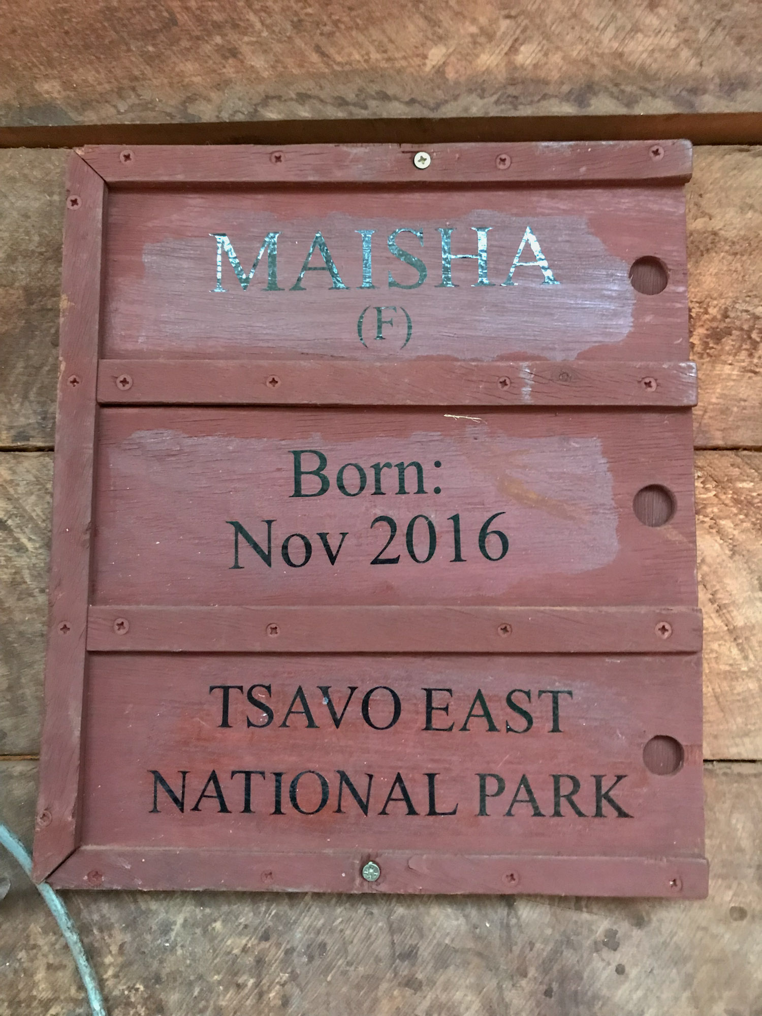 Maisha's stable sign