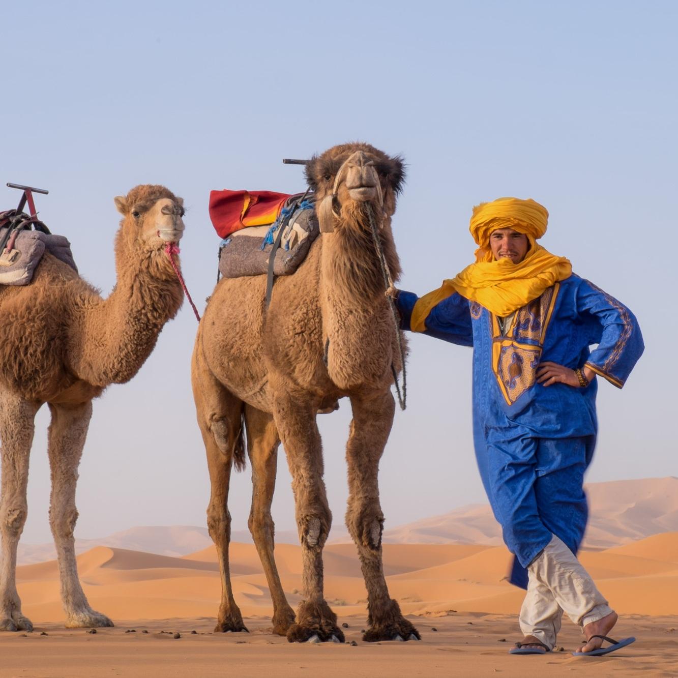 morroco-desert-camels-guide-2017-03-22.jpg
