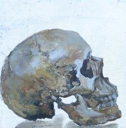 Skull (Available)