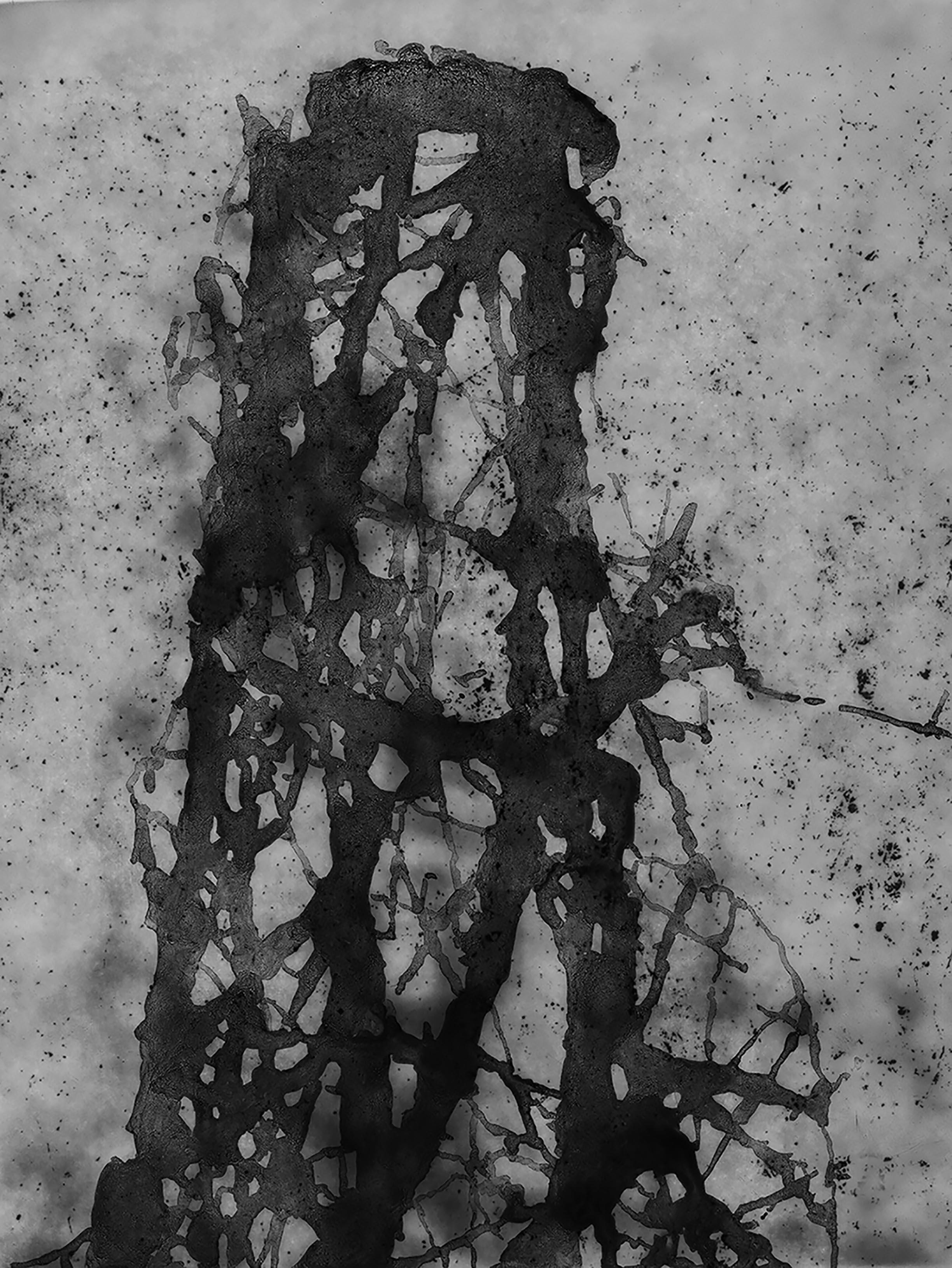 11. deep in the woods 11.jpg