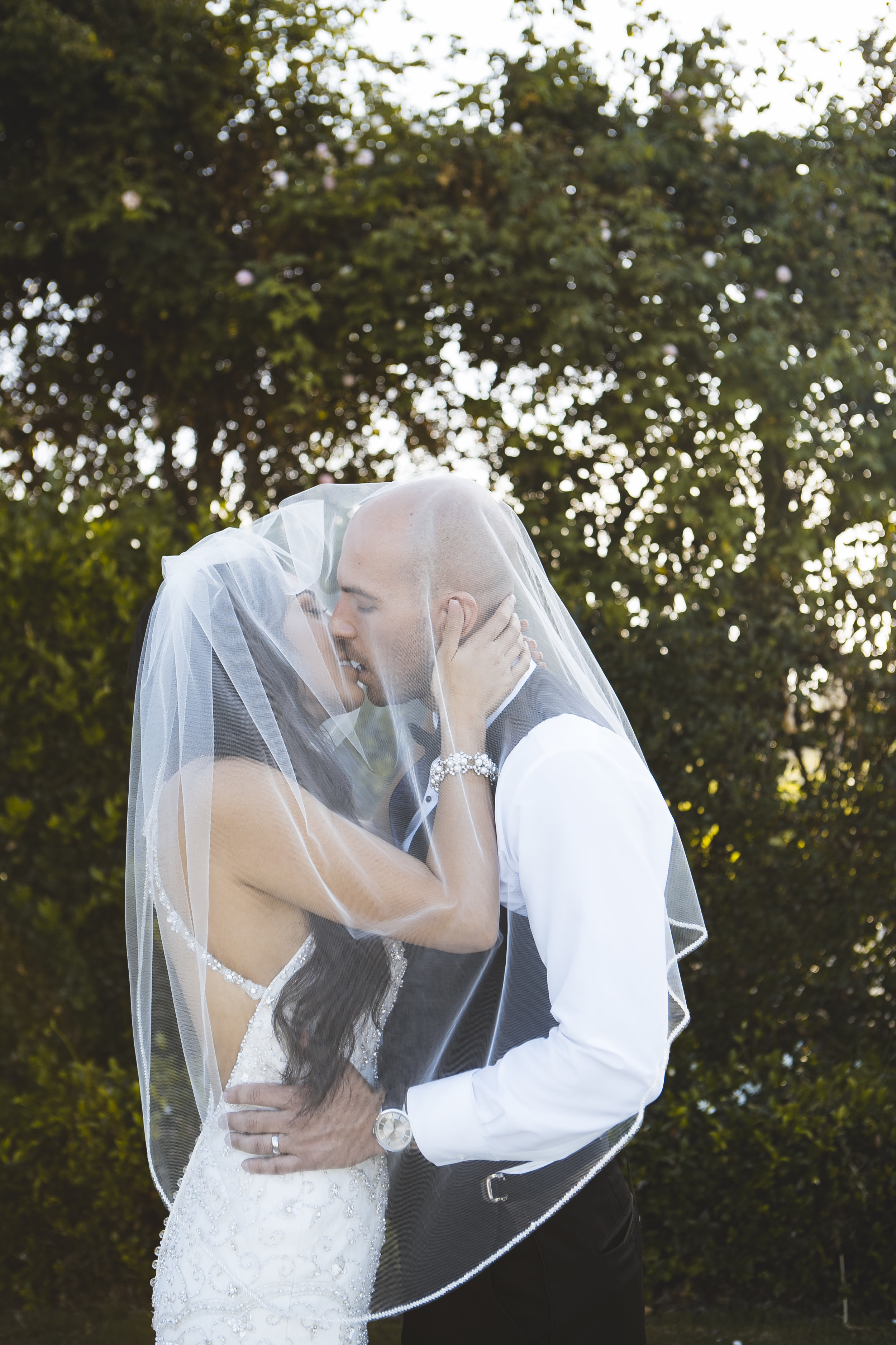 veil picture
