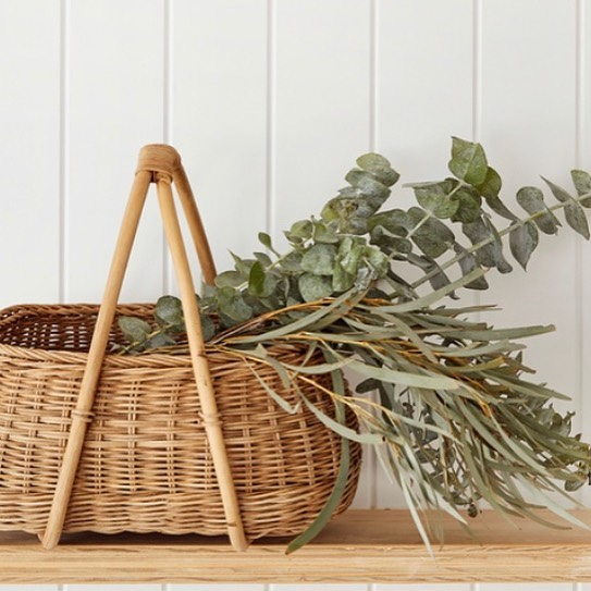 our new baskets, for all your gathering needs 🌿