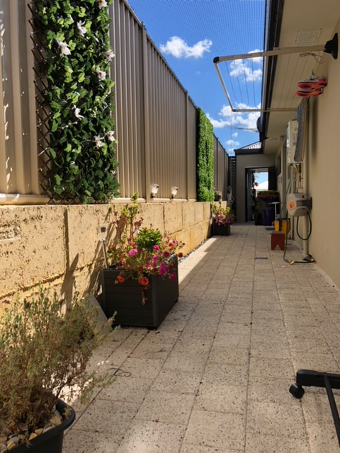- Side of house alleyways offer the most cost-effective way to transform an area into a large play space for cats, using the building and fence as supports for the roof and end wall netting.
