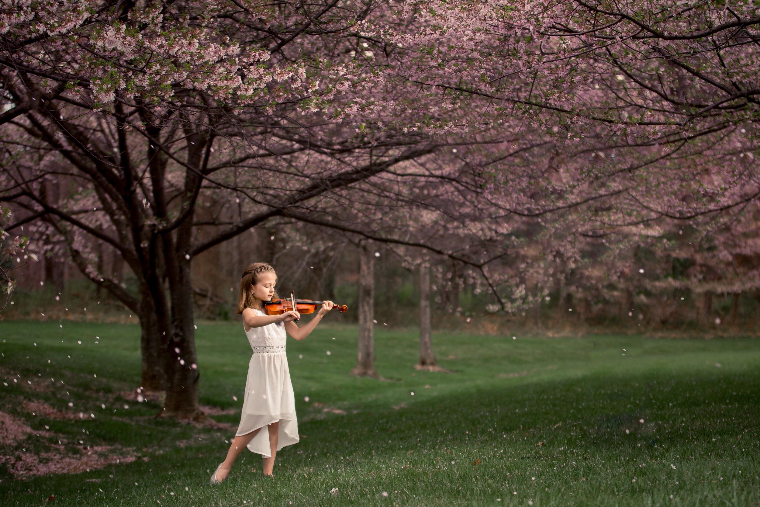 Amelia cherry blossoms 18-95-Edit.jpg