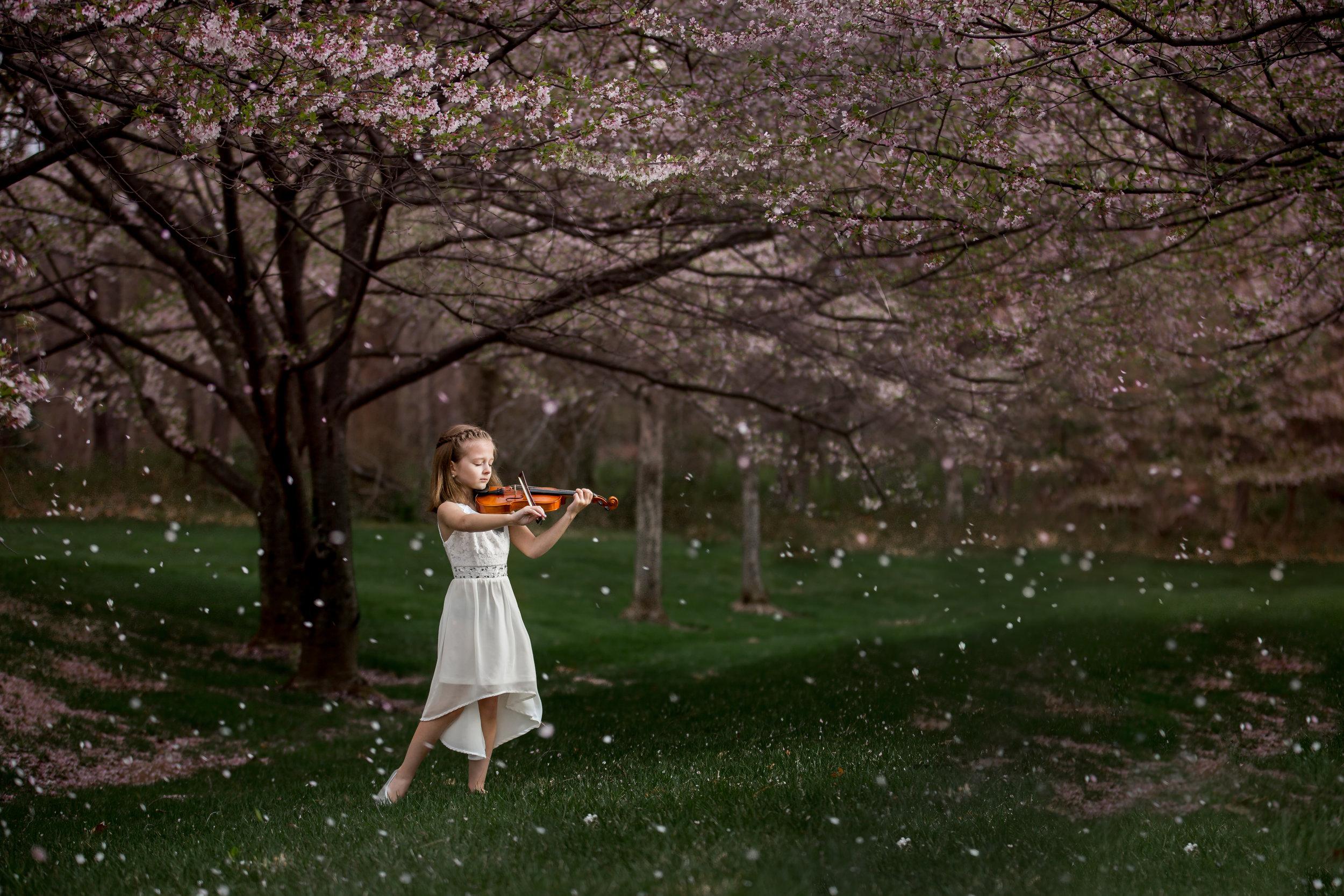 Amelia cherry blossoms 18-94-Edit.jpg