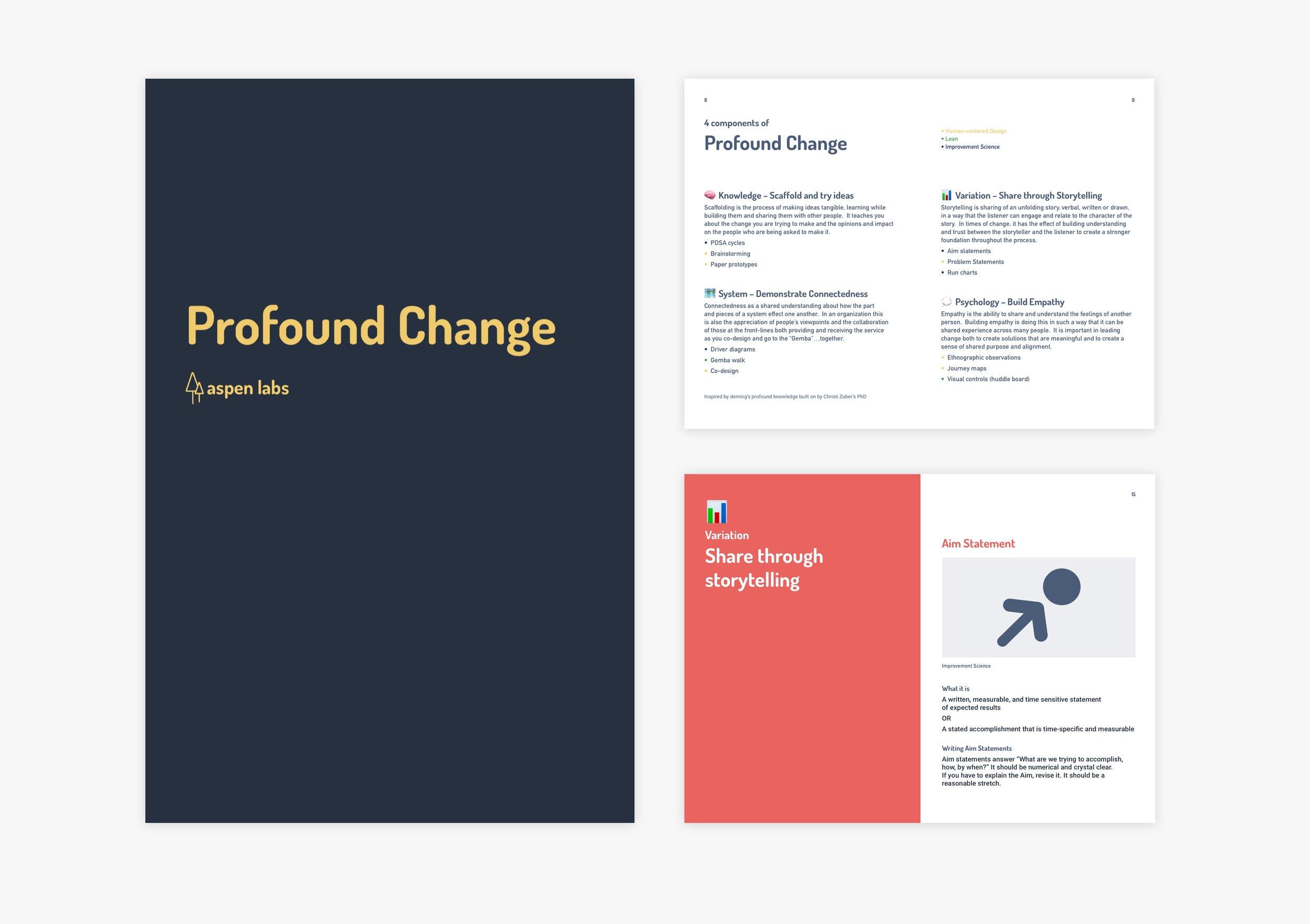 Profound Change Booklet.jpg