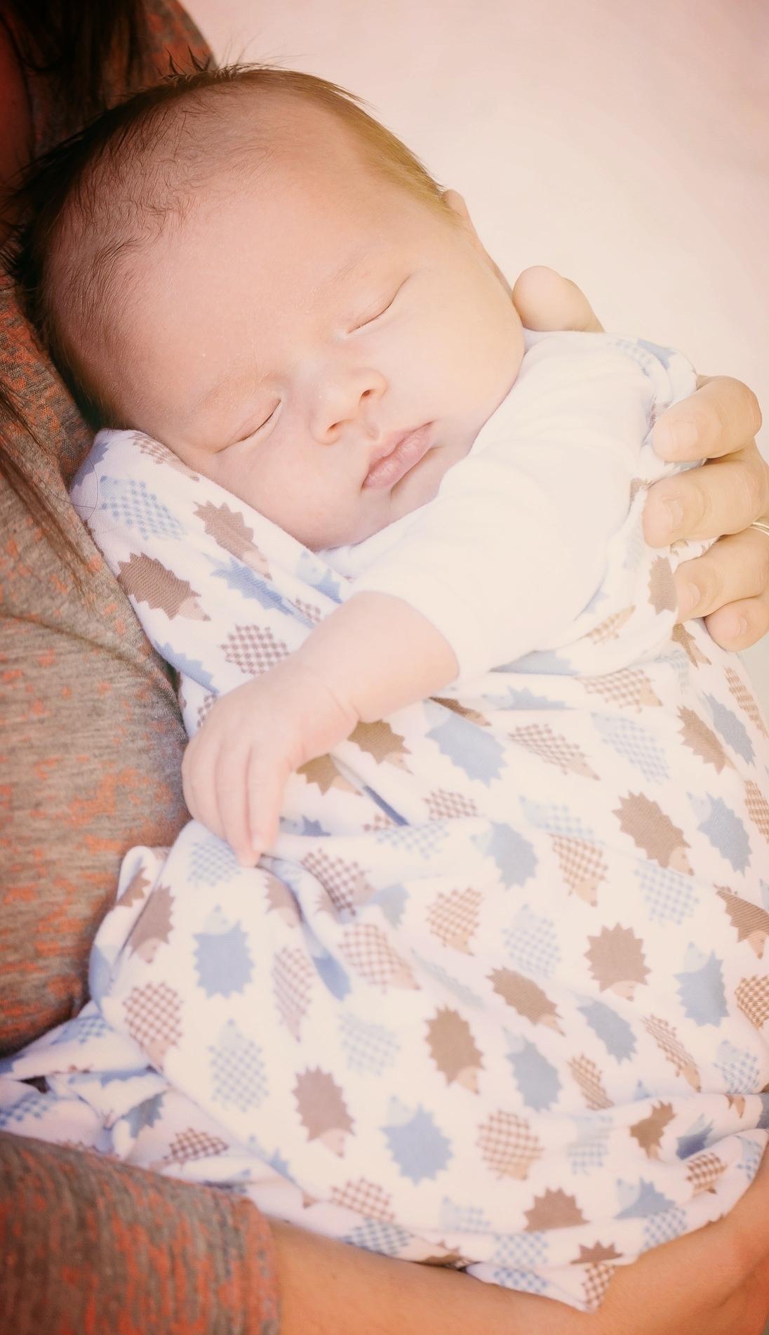 newborn-457233_1920.jpg