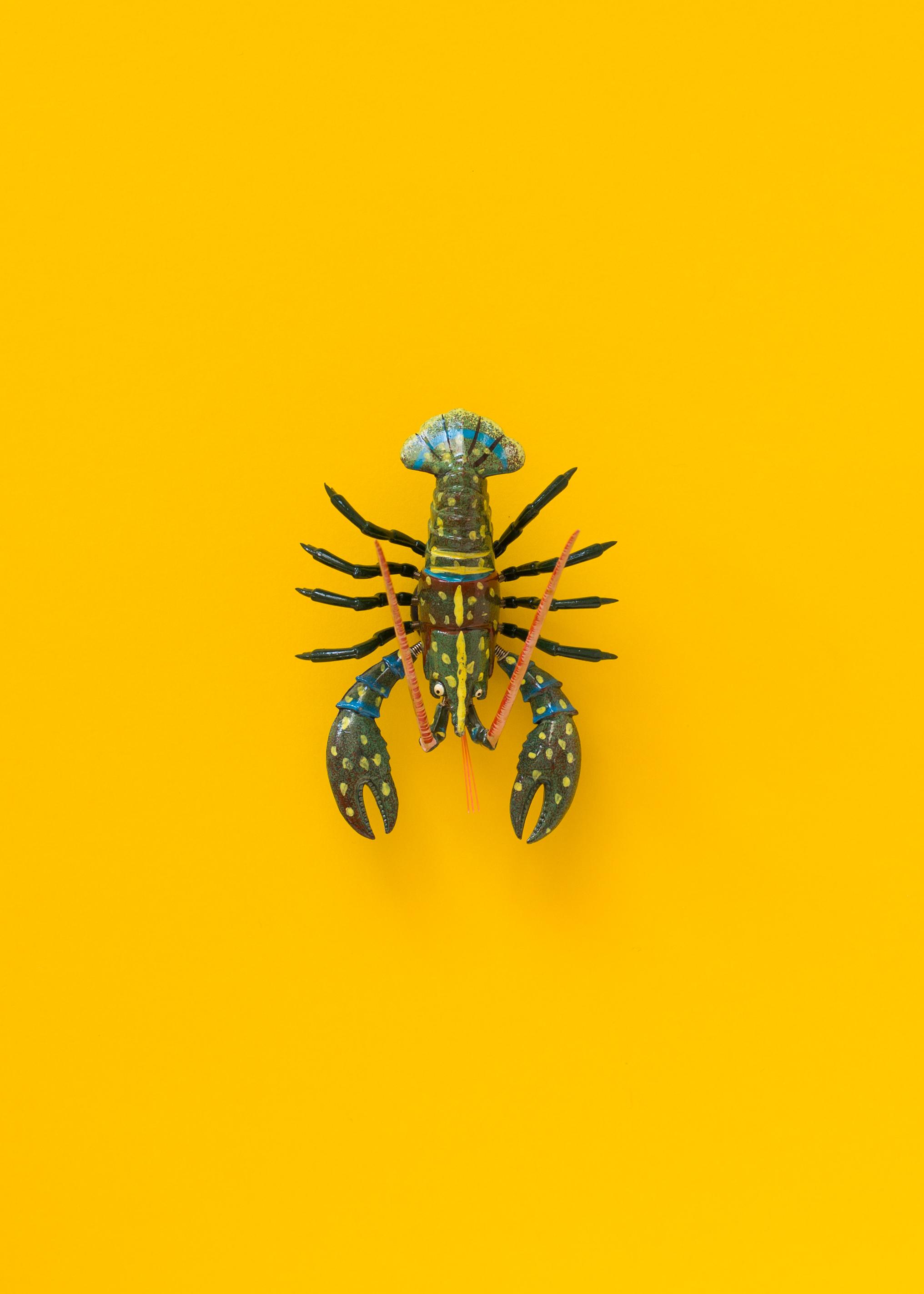 Lobsters2-12.jpg