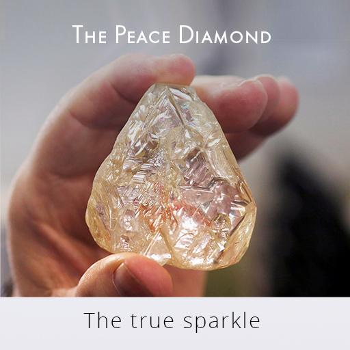 SL709- the true sparkle.jpg