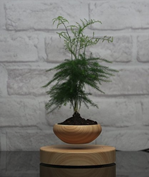 Invincible Levitating Air Bonsai Pot