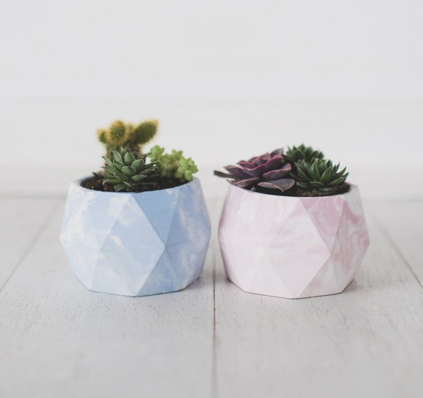 Invincible Cactus Pot Geometric Marble