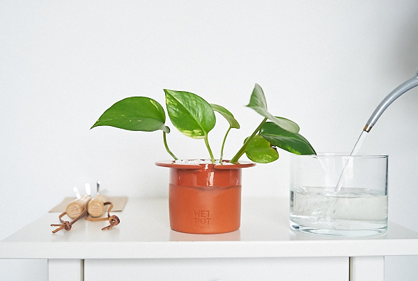 Combination of two classics (a terracotta pot in a glass vase), the  Wet Pot  is the most elegant pot with a water reservoir.