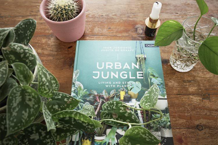 Urban Jungle  by Judith De Graaff and Igor Josifovic, 2016. Photo: InvincibleHousePlants.com