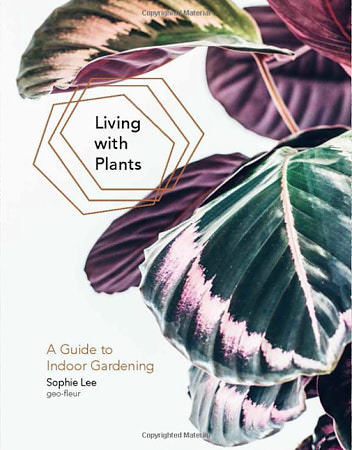 Living With Plants  by Sophie Lee, 2017