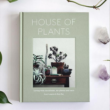 House Of Plants  by Rose Ray and Caro Langton, 2016 (Photo Credit NGNG Design)
