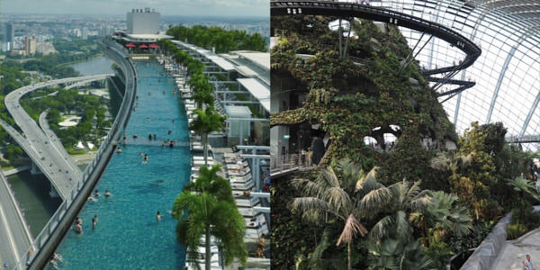 Left: a green rooftop in Singapore (credits: Timothy Hursley)    Right: Singapore international airport has its own indoor forest (credits: Getty Images)