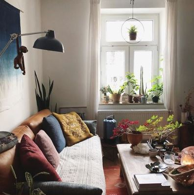 30 Plant Instagram Accounts For Decor Inspiration In 2019 The Houseplant Urban Jungle Blog
