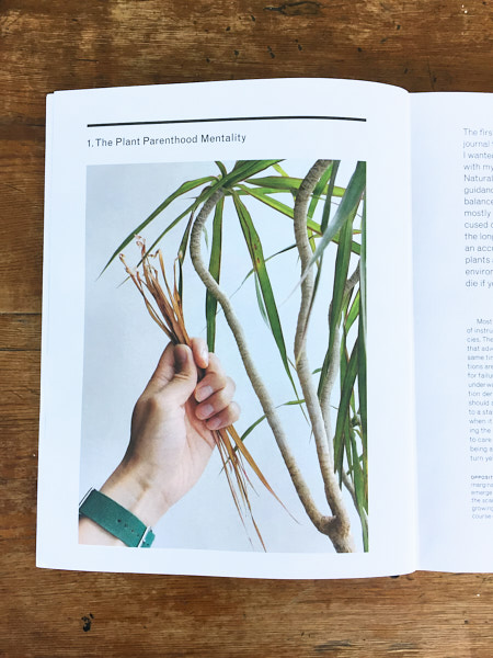 The New Plant Parent (book review) — The Houseplant & Urban