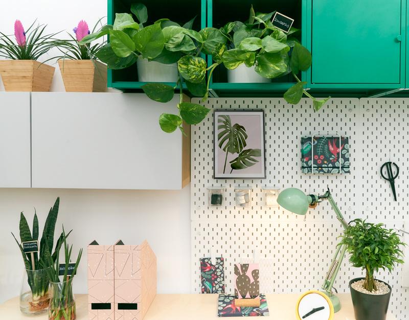 home-office-houseplants-desk-work-station.jpg
