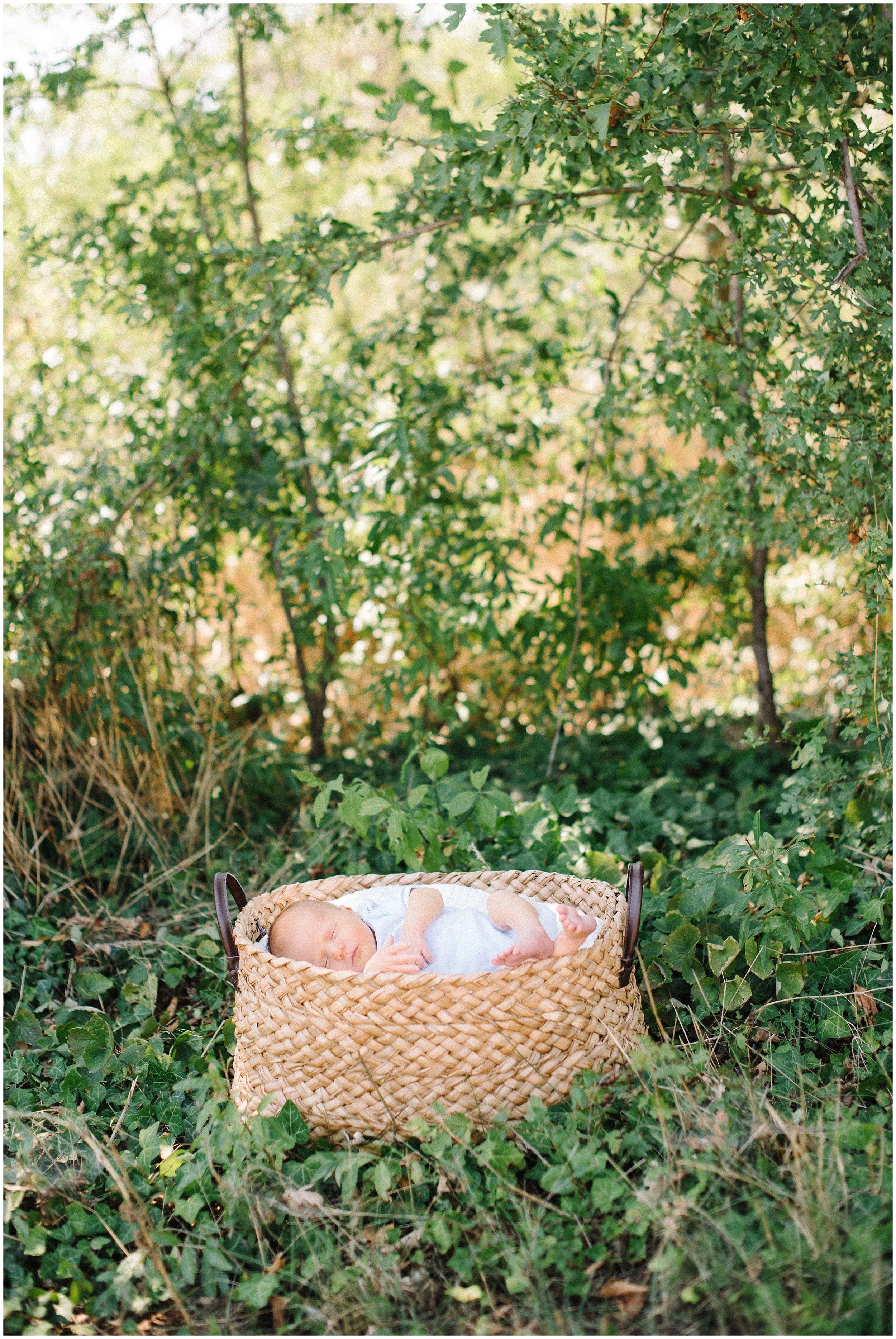 newborn körbchen natur
