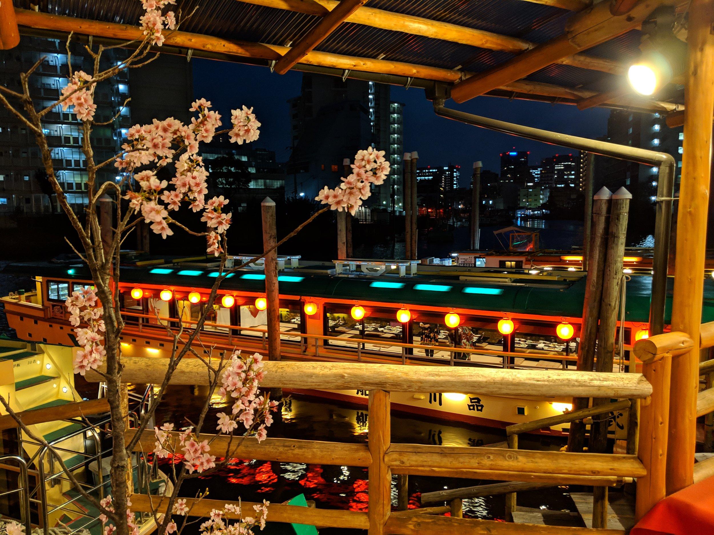 yakatabune-cruise-sakura-cherry-blossom.jpg