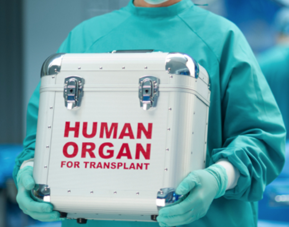 Transplant -