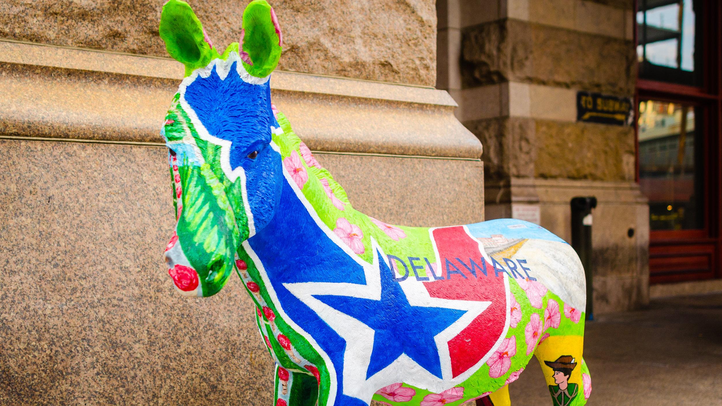 Donkeys!-3.jpg