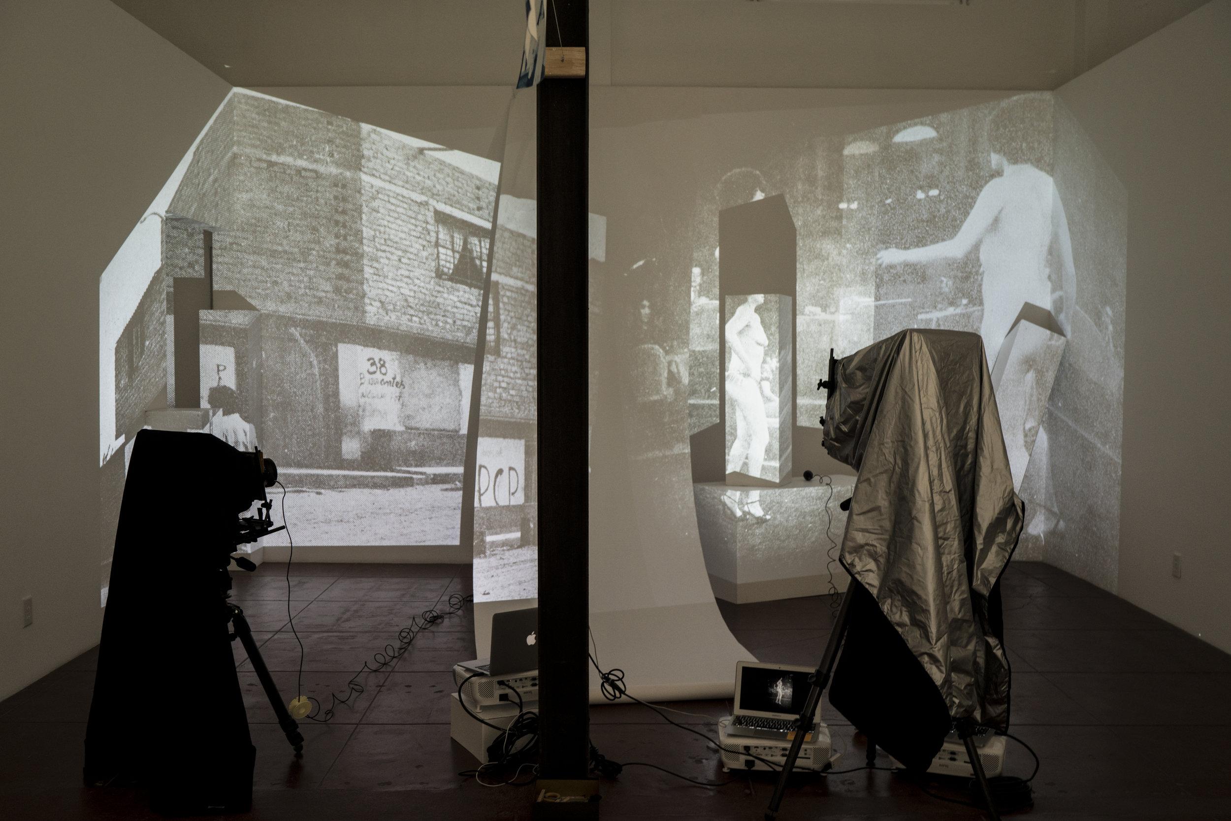 Tarrah Krajnak  1979 Contact Negatives Installation