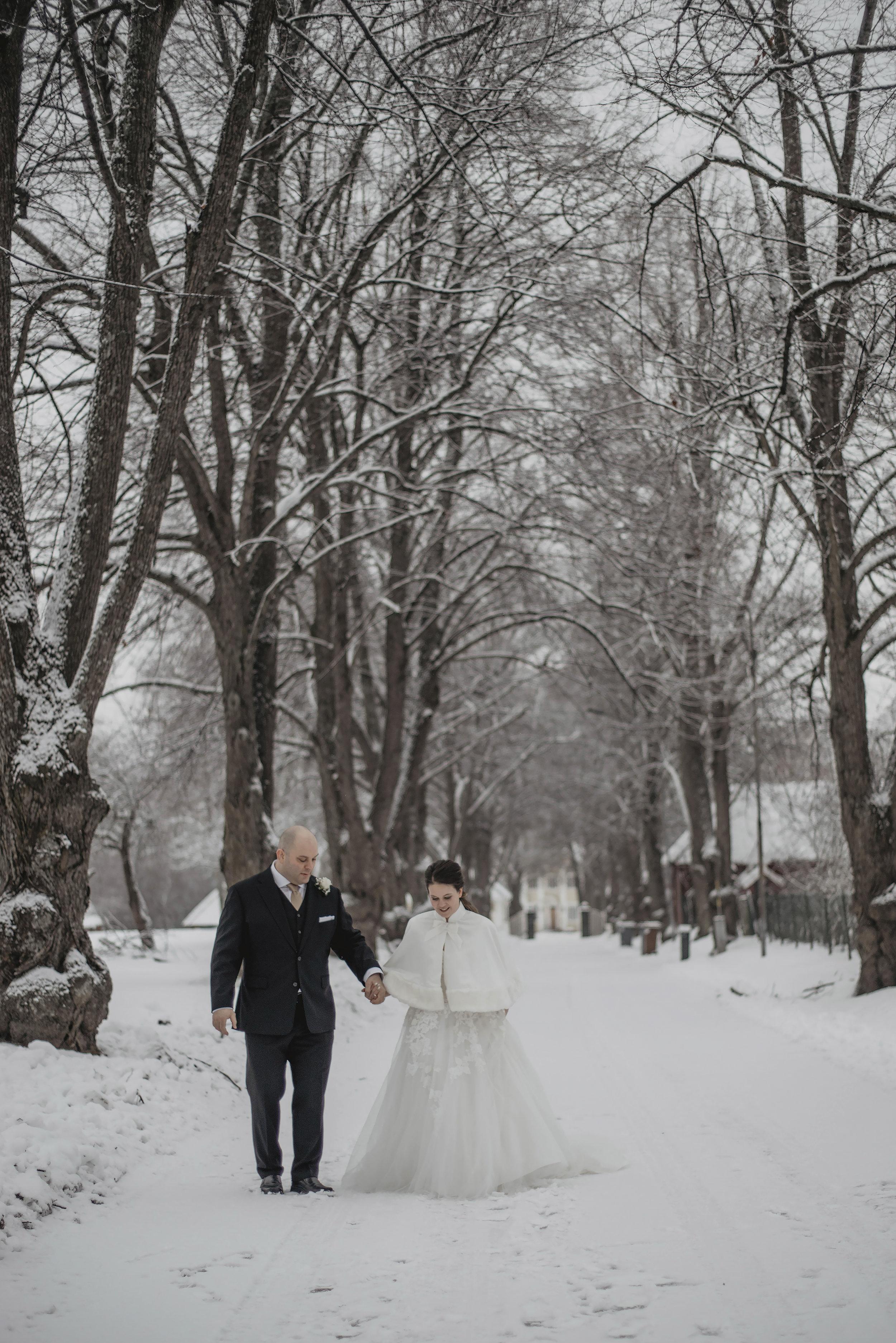 Vinterbröllop - Sofie & Roy