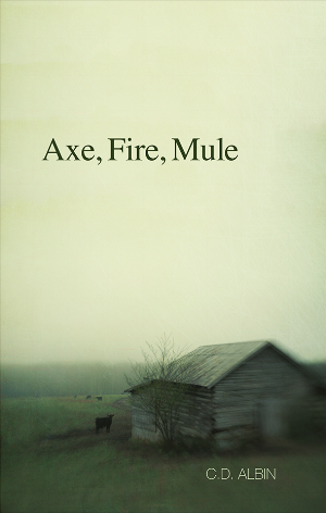 Axe_Cover.png