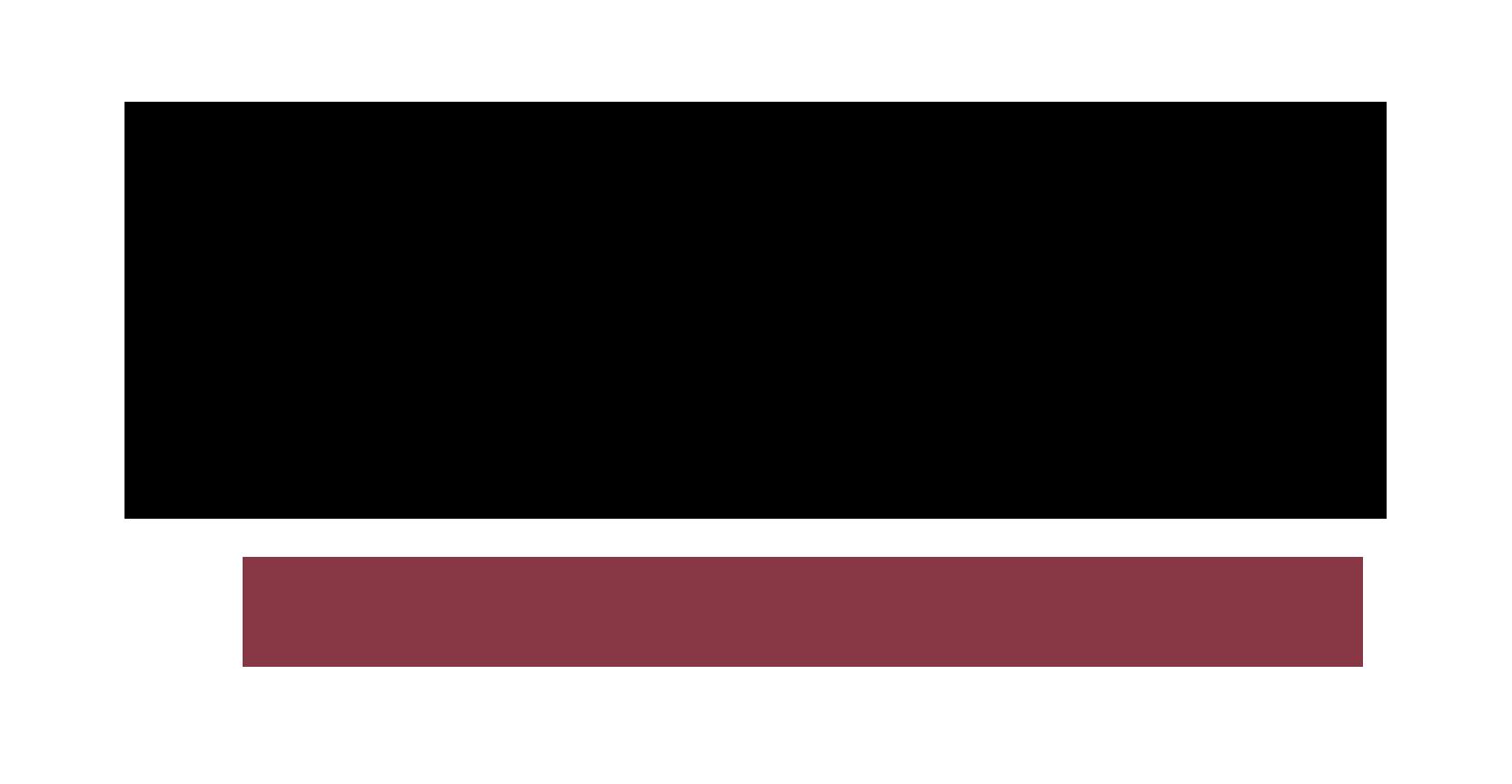 losita productions logo.png