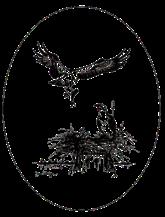 clear logo Rev B.png