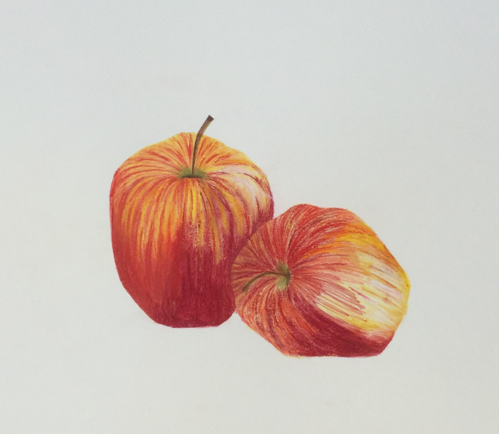 Copy of Apple illustration by Briony Dixon