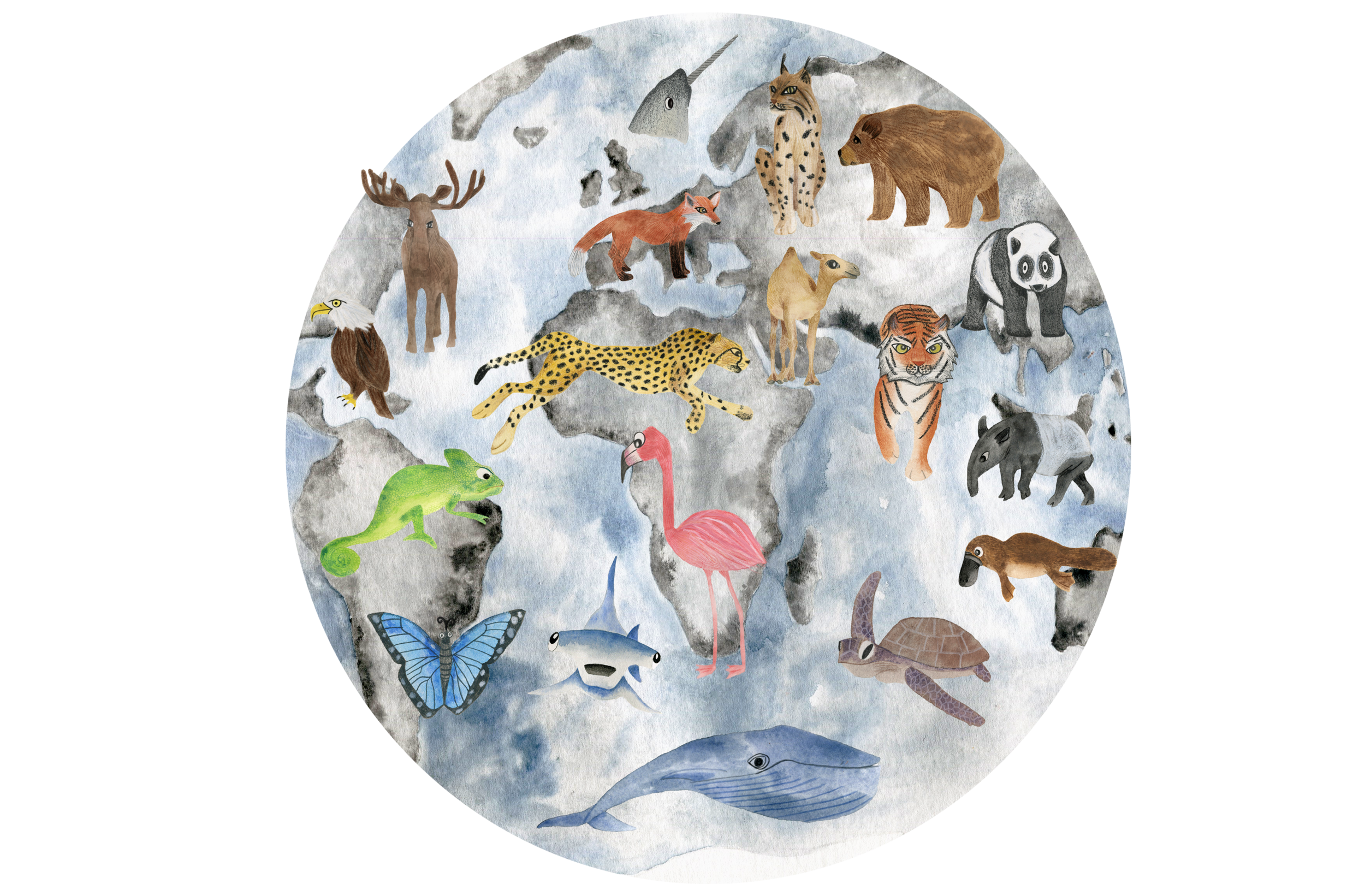 Animal map illustration by Briony Dixon