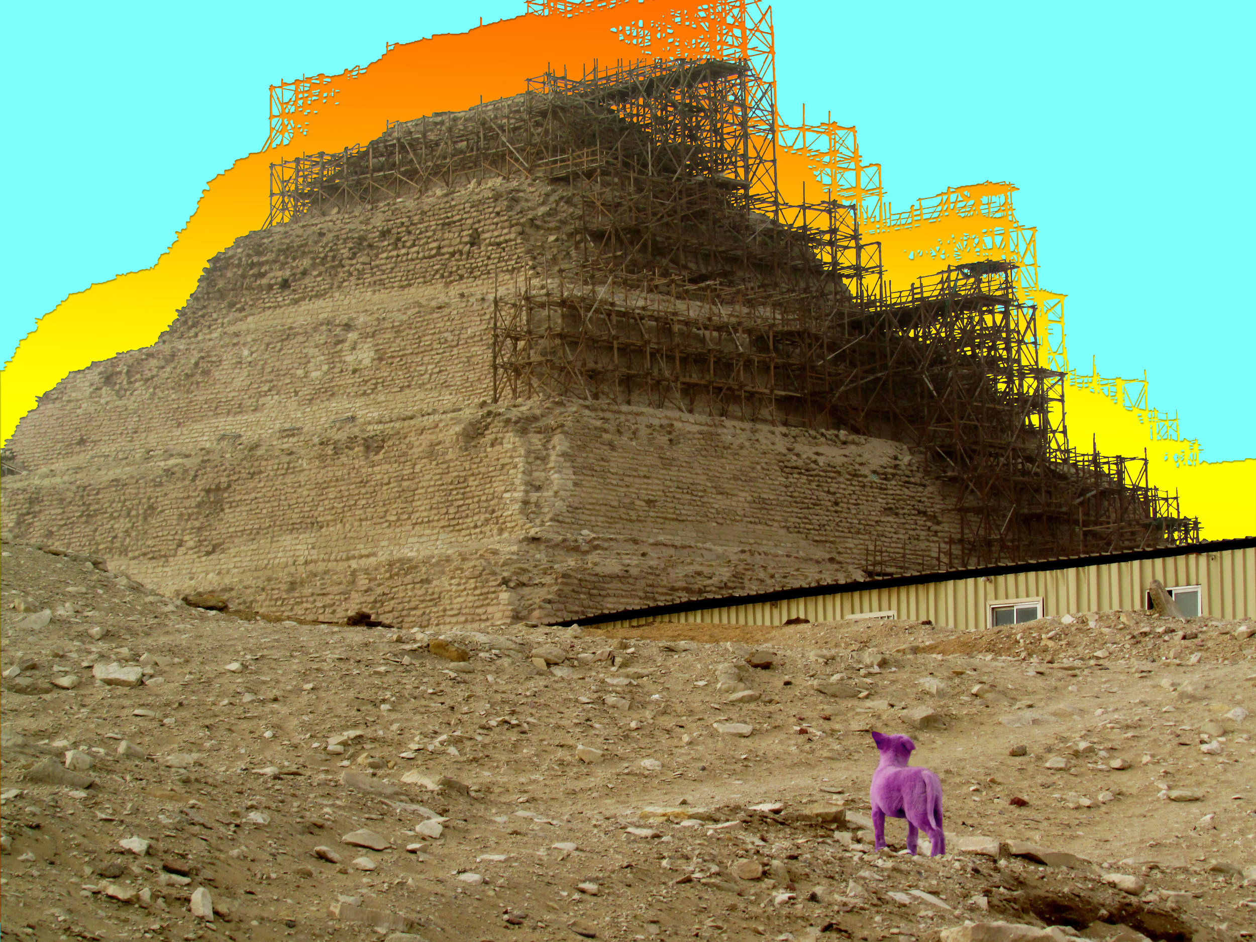 Dog Looking at the Step Pyramid | Egypt | Abstract Edit