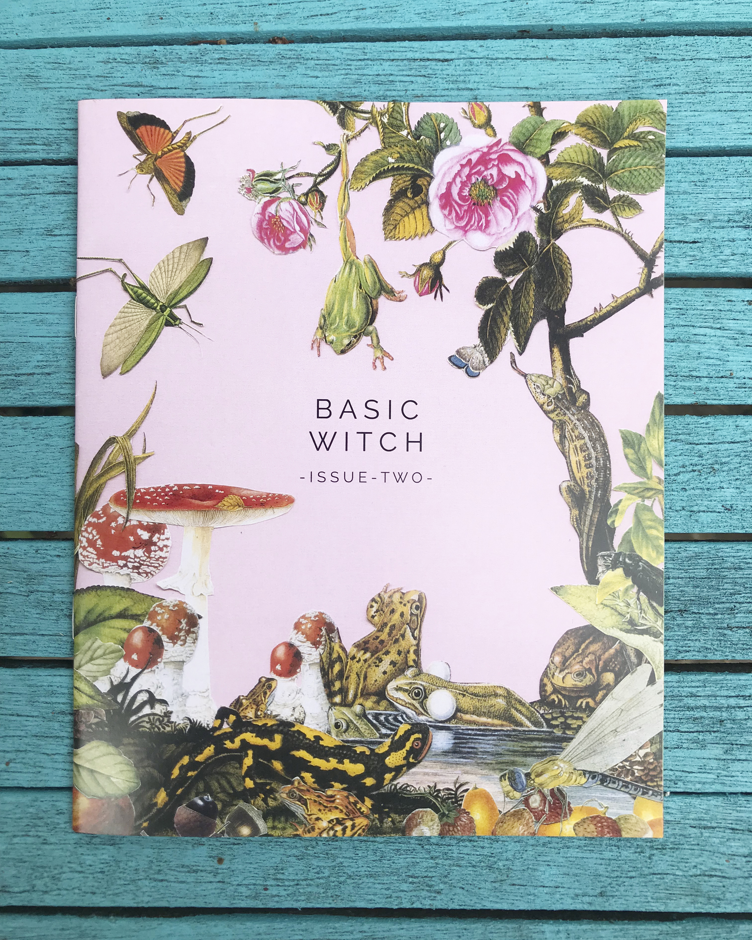 Basic Witch - Issue Two   Basic Witch is satirical zine about witchcraft for millennials. This thirteen page book of shadows, produced seasonally by Teän Roberts and Cormac Cleary, takes the tropes of traditional lifestyle magazines - how to's, beauty tips, recipes, travel writing - and adapts them in the service of the modern witch. Issue Two features a séance for contacting your tinder ghosts, dating advice from Agatha - our resident Hagony Aunt - and instructions for cleansing your home of spirits, and much more.