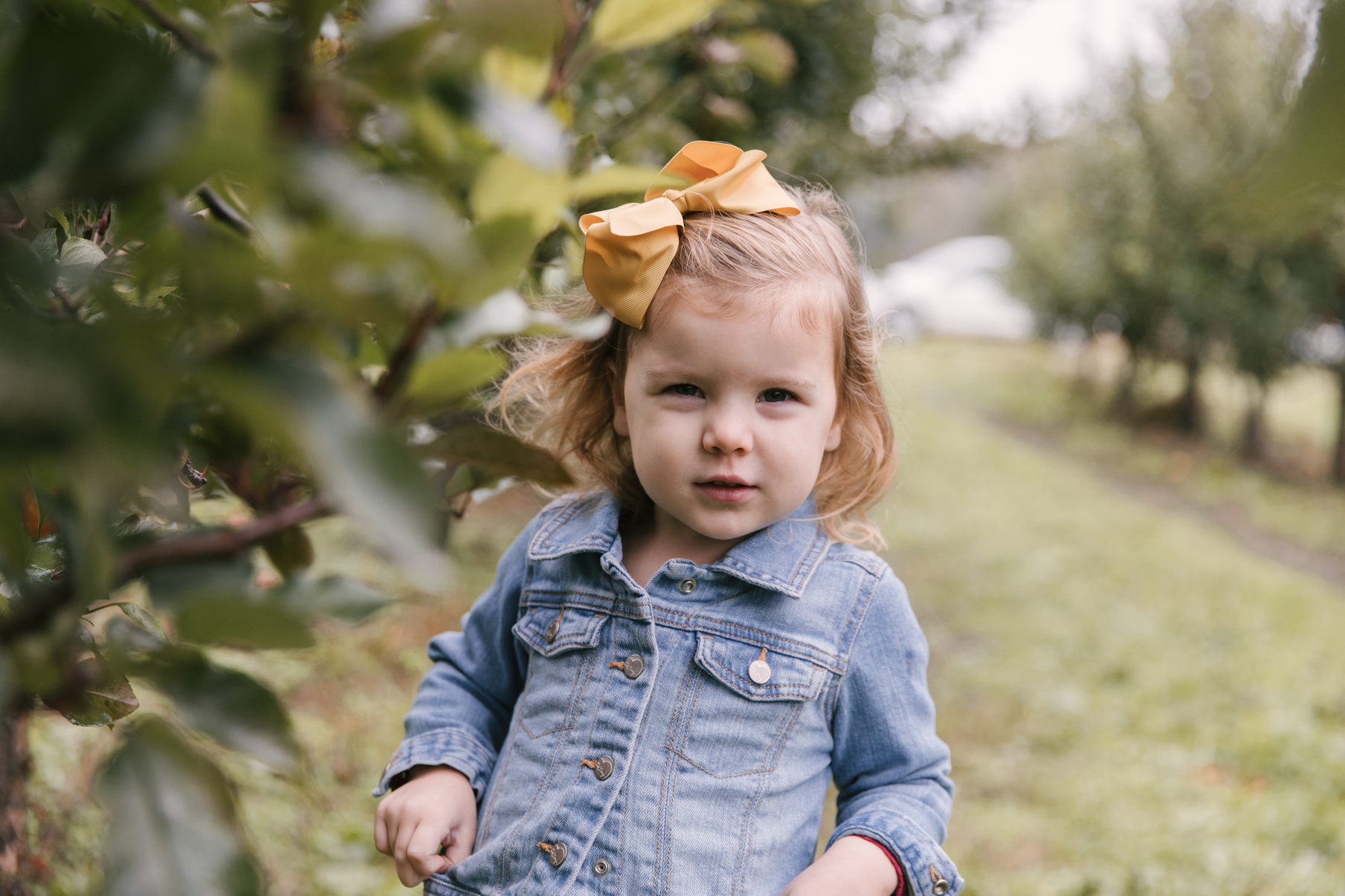 family-photography-session-at-hartford-apple-orchards-hartford-ohio-by-family-photographer-christie-leigh-photo-19.JPG
