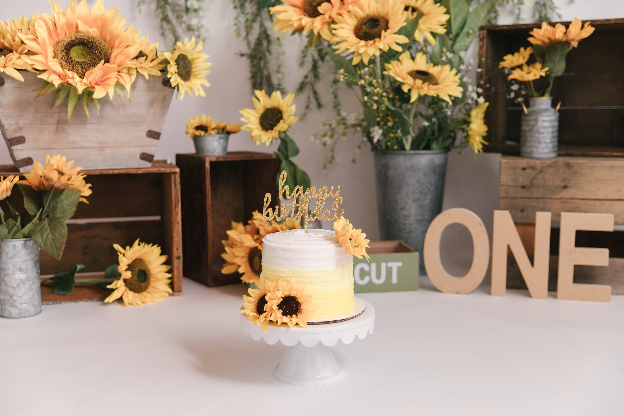 Sunflower_Themed_First_Birthday_Studio_Session_Smash_Session_Little_Girl_Turns_One_Ombre Smash_Cake_with_Christie_Leigh_Photo_Cortland_Ohio-2.JPG