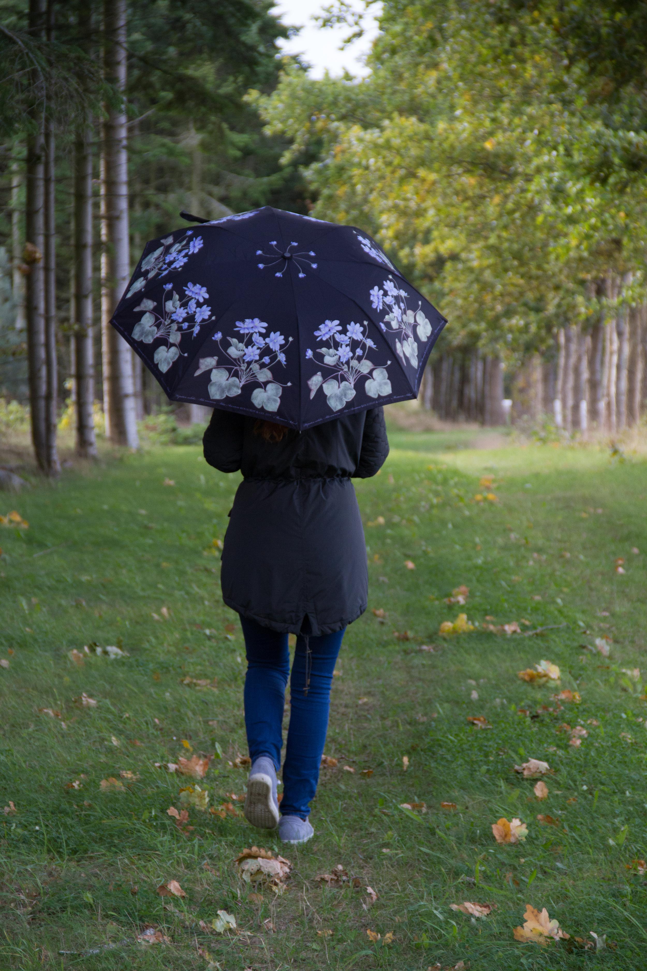 Paraply anemone.jpg