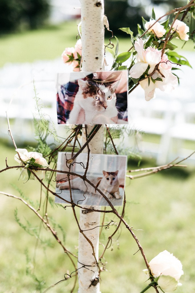 Unique wedding details- photos attached to wedding chuppah