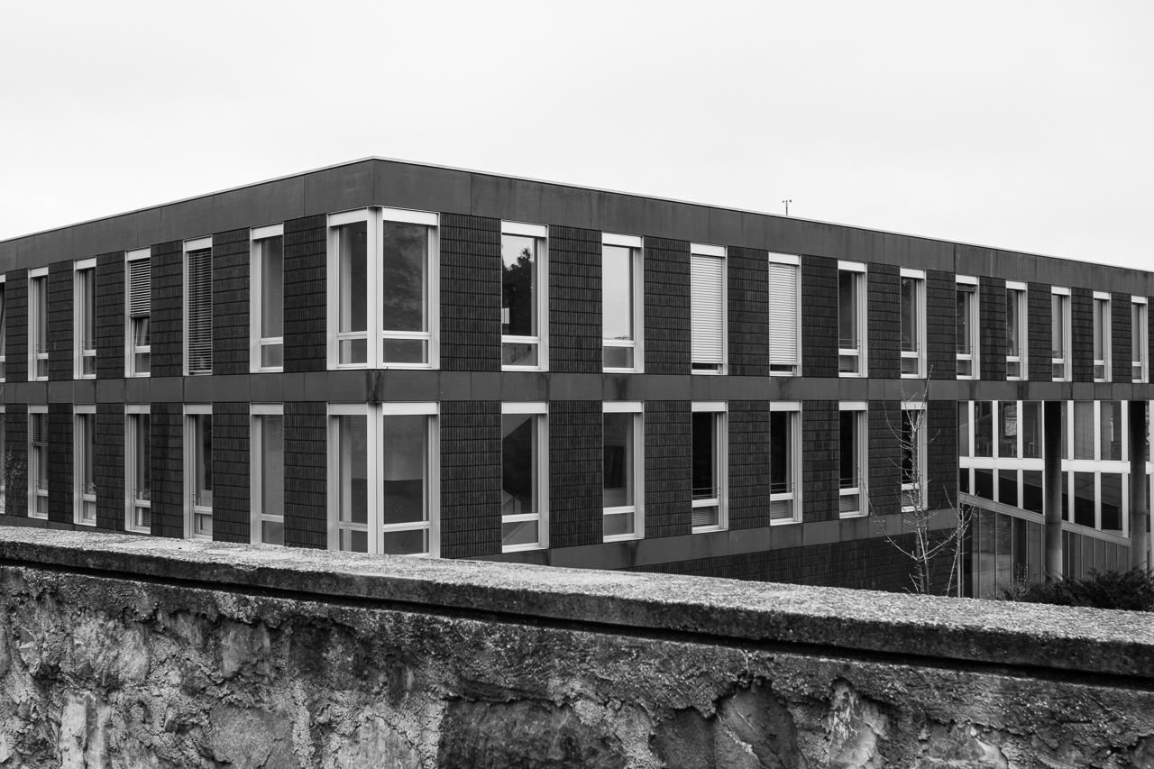 Amr Soliman e Patrik Zurkirchen / Palazzo Canavée - Mendrisio