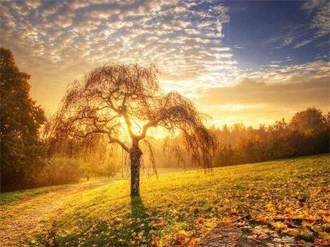f5bd82c64566d8b6c5bc9bd16865ce5c--beautiful-sunset-beautiful-places.jpg