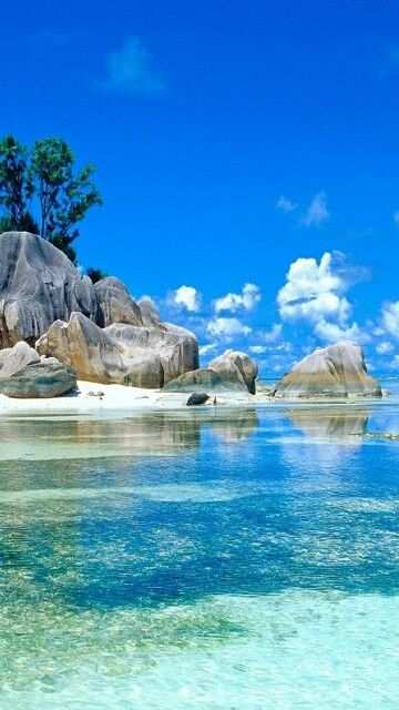 Caribbean Clear