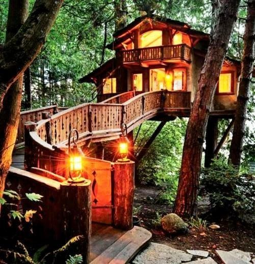 Dinner in the Tree House