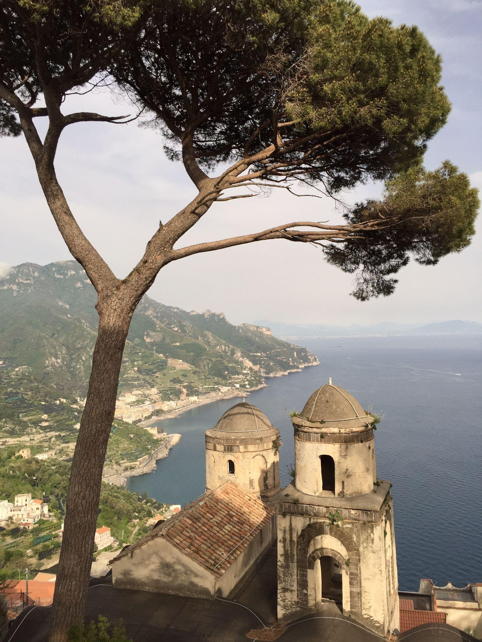 Lollipop pines in Italy